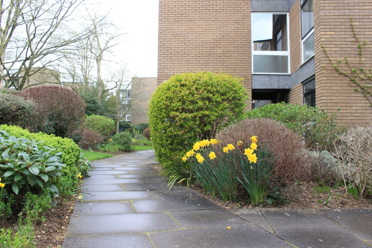 Butler Close, North Oxford - OX2